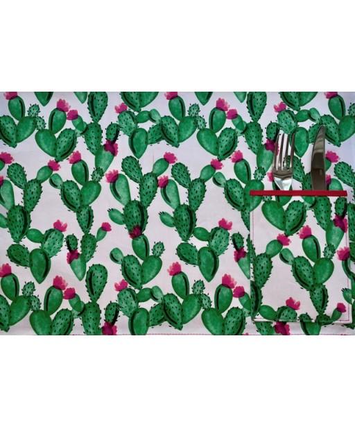 Σουπλά_Cactus